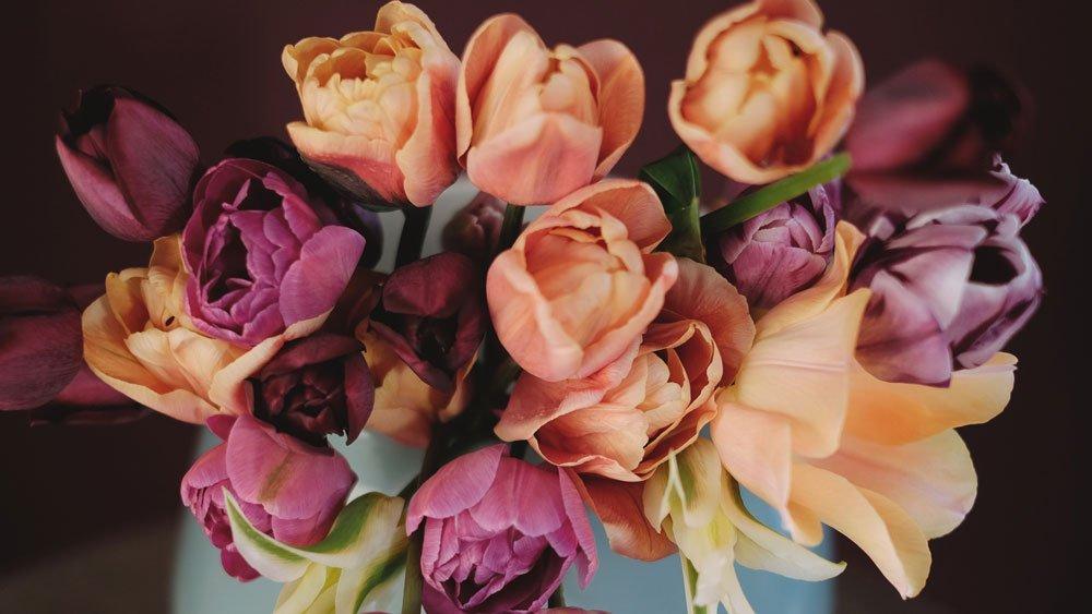 Journal Beitrag mit Tulpen gestalten